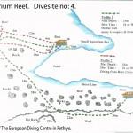 Aquarium Reef divesite 5