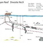 Dalyan Reef divesite 9